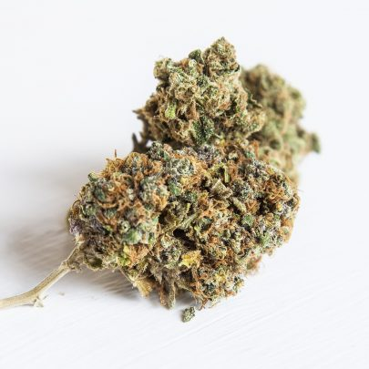 Moby Dick: A Winning Indica-Dominant Cannabis Strain